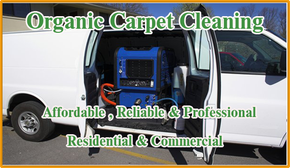 Carpet Cleaning Cardiff by the Sea 858